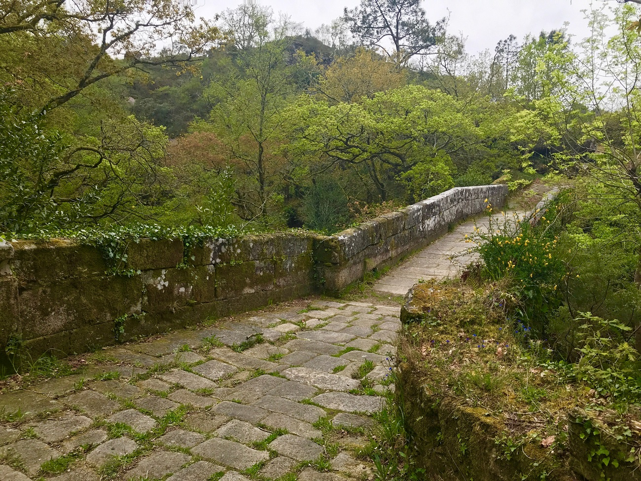 Roman road near Cambados galicia spain walks photo art travel