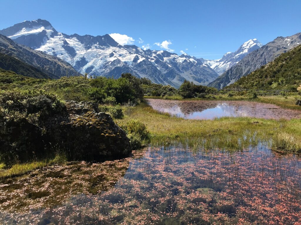 Red Tarns Track Mount Cook Aoraki National Park hiking walking trail New Zealand Landscape image photo